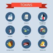 Understanding Toxicity 1 – Exposure